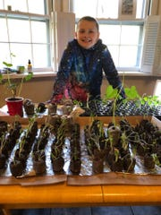 Ben Romeo, 9, of West Milford is growing plants to raise money for cancer research at Memorial Sloan Kettering Cancer Center, putting his dream of new Pokémon cards on hold.