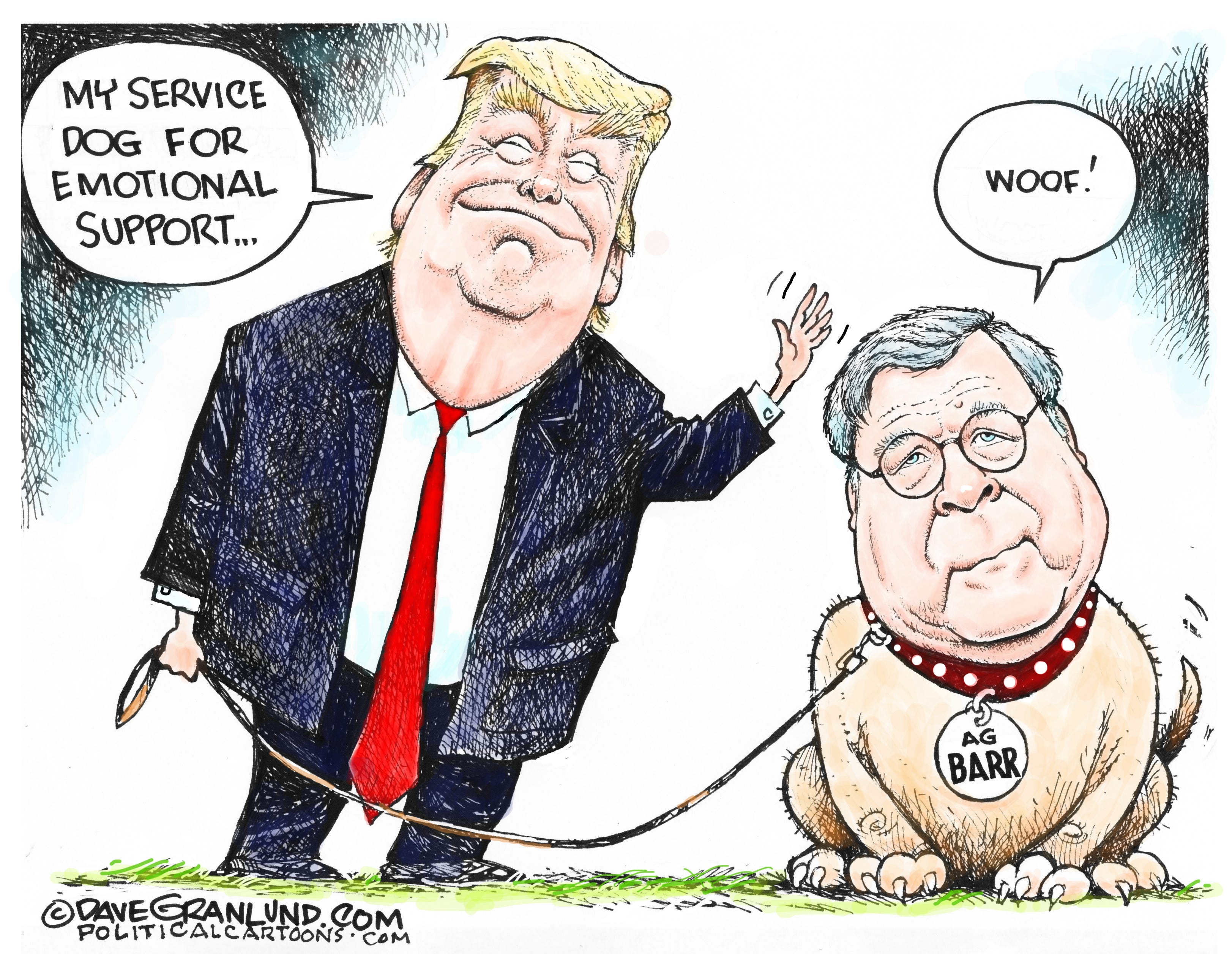 Image result for barr trumps lap dog