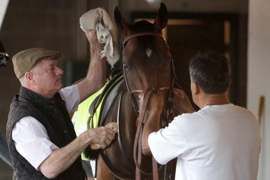 Trainer Richard Mandella, left, grooms Omaha Beach Wednesday morning. Hours later, confirmation came that Omaha Beach would be scratched from the Derby.