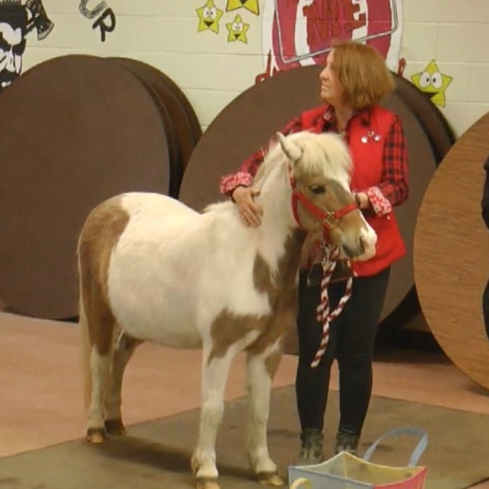 Lakewood schools get Peanut the pony and a $30 million budget boost