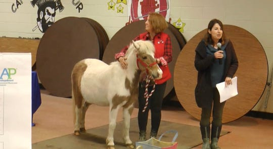 Peanut the pony, his handler, Kathy Rogers Taler and Lakewood public schools physical therapist Kyna Darrow Barr, at a school board meeting on April 30, 2019.