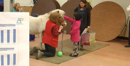 Peanut the pony will help launch animal therapy in Lakewood preschools. But first: A loving pat at the school board meeting on April 30, 2019.