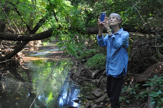 Edmunds, conducting research in a quiet section of Mill Brook above River Road in Highland Park for her story map, Mill Brook: Portrait of an Urban Stream.