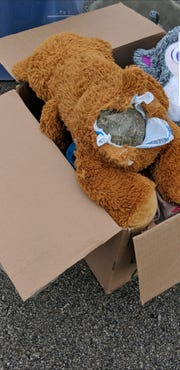 The teddy bear stuffed with suspected laced marijuana was found during a traffic stop in Woodville on Thursday.