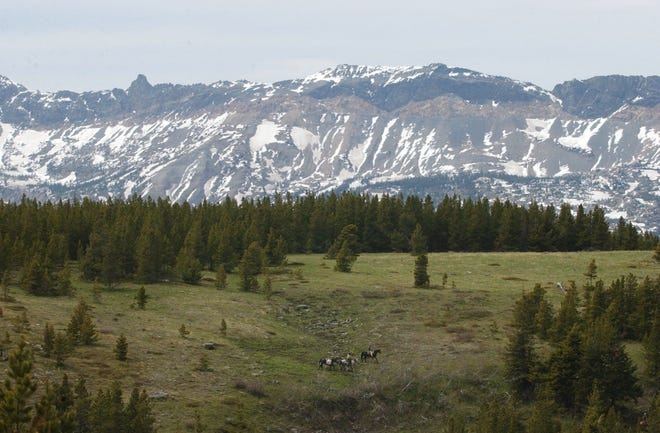 U.S. Sen. Jon Tester, D-Mont., is urging the Interior Department not to allow drilling in the Badger-Two Medicine Area bordering Glacier National Park.