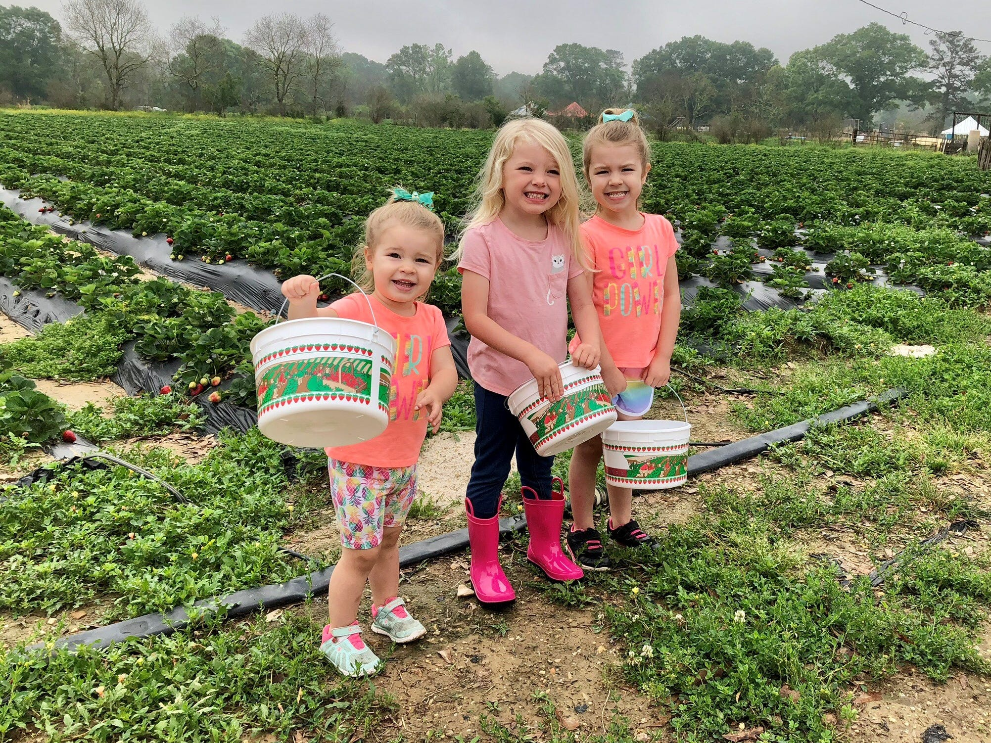 Cousins Marie Guidry, Claire Ivy and Avery Guidry prepare to pick strawberries April 6 at Mrs. Heather's Strawberry Farm in Albany, Louisiana.