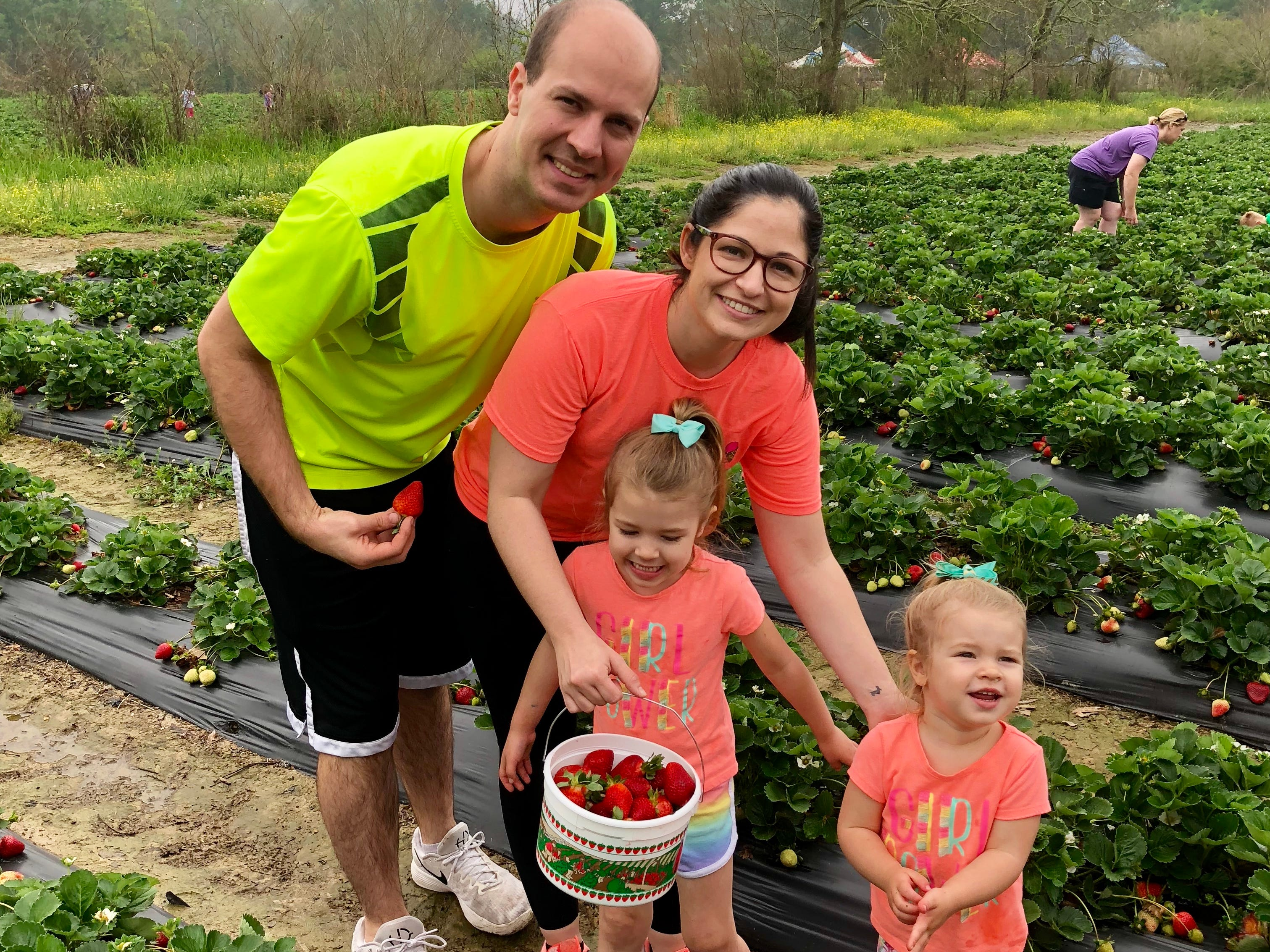 Reporter Leigh Guidry and family pick strawberries April 6 at Mrs. Heather's Strawberry Farm in Albany, Louisiana.