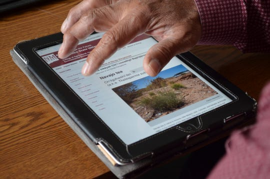 """The website, """"Selected Plants of Navajo Rangelands,"""" lists approximately 150 plants found on rangeland within the boundaries of the Navajo Nation."""