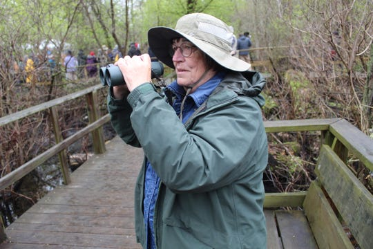 Evelyn Schlachter of Defiance uses her binoculars to get a closer look at several bird species Friday morning at the Magee Marsh Wildlife Area Boardwalk. Schlachter and thousands of other avid birders are visiting the region for the Biggest Week in American Birding, which runs through May 12.
