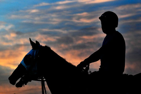 An exercise rider guides a horse to the track during morning workouts at Churchill Downs.
