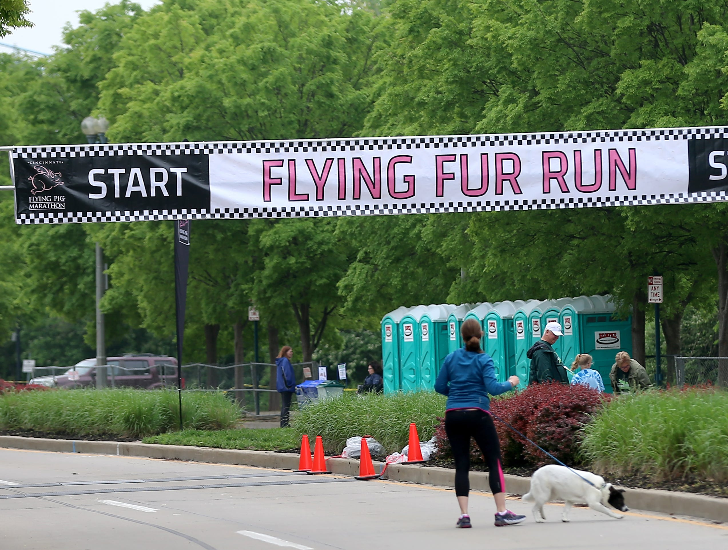 The starting line for  the Flying Fur race, Downtown Cincinnati Saturday, May 4,2019.