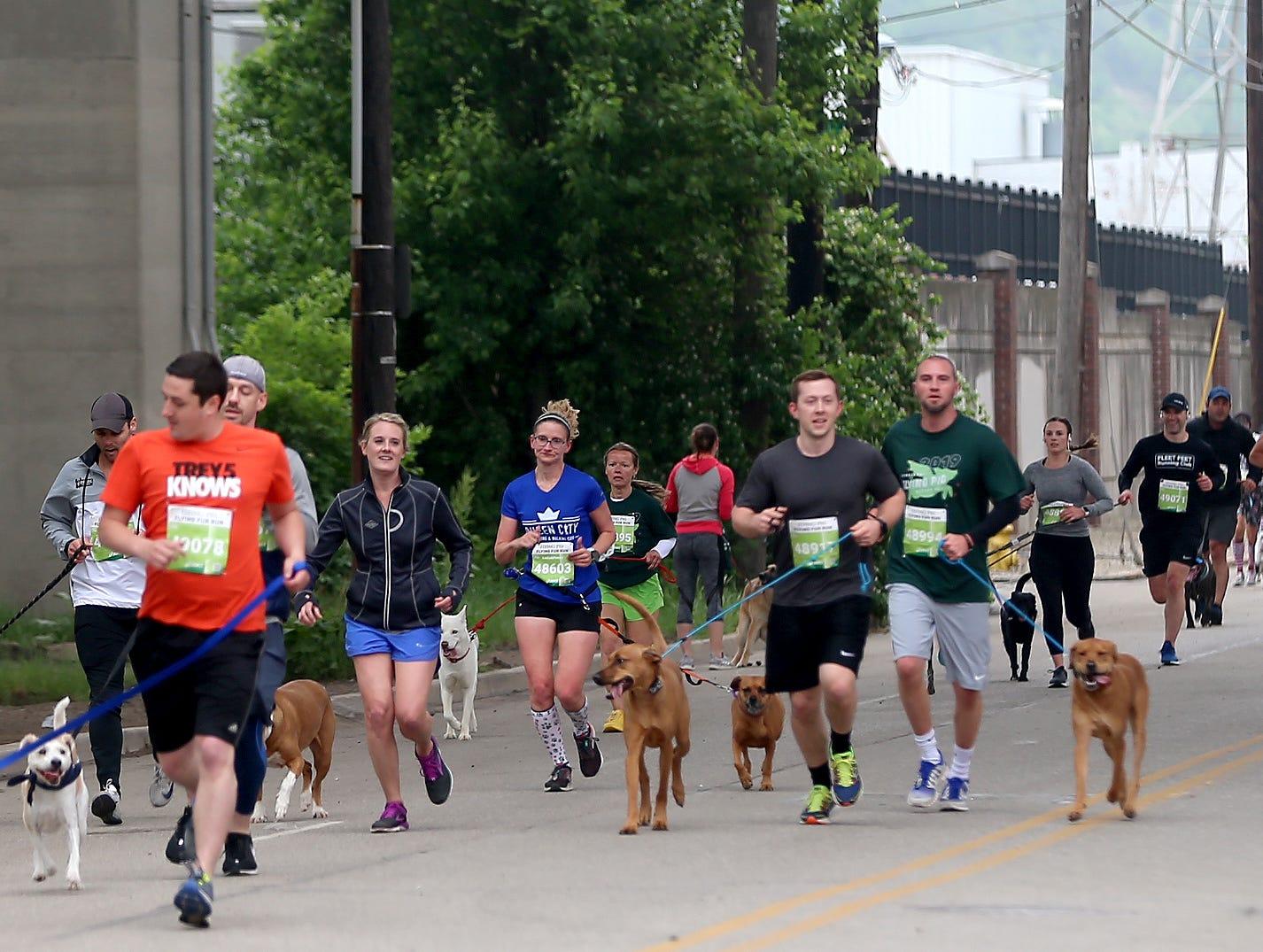 Runners during the Flying Fur race, Downtown Cincinnati Saturday , May 4,2019.