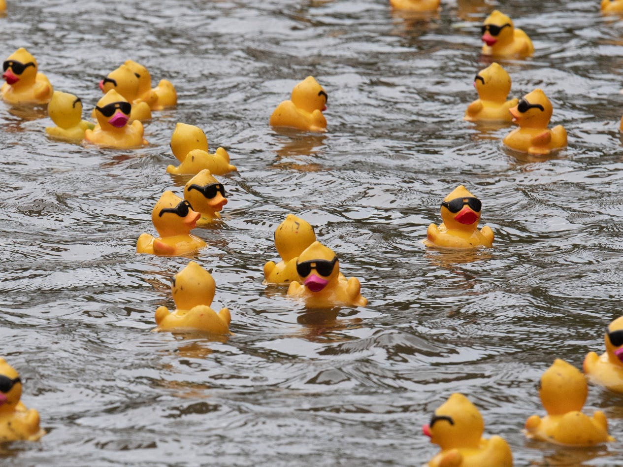 Rubber ducks float along during the 2019 Reedy River Duck Derby in Falls Park on the Reedy Saturday, May 4, 2019.