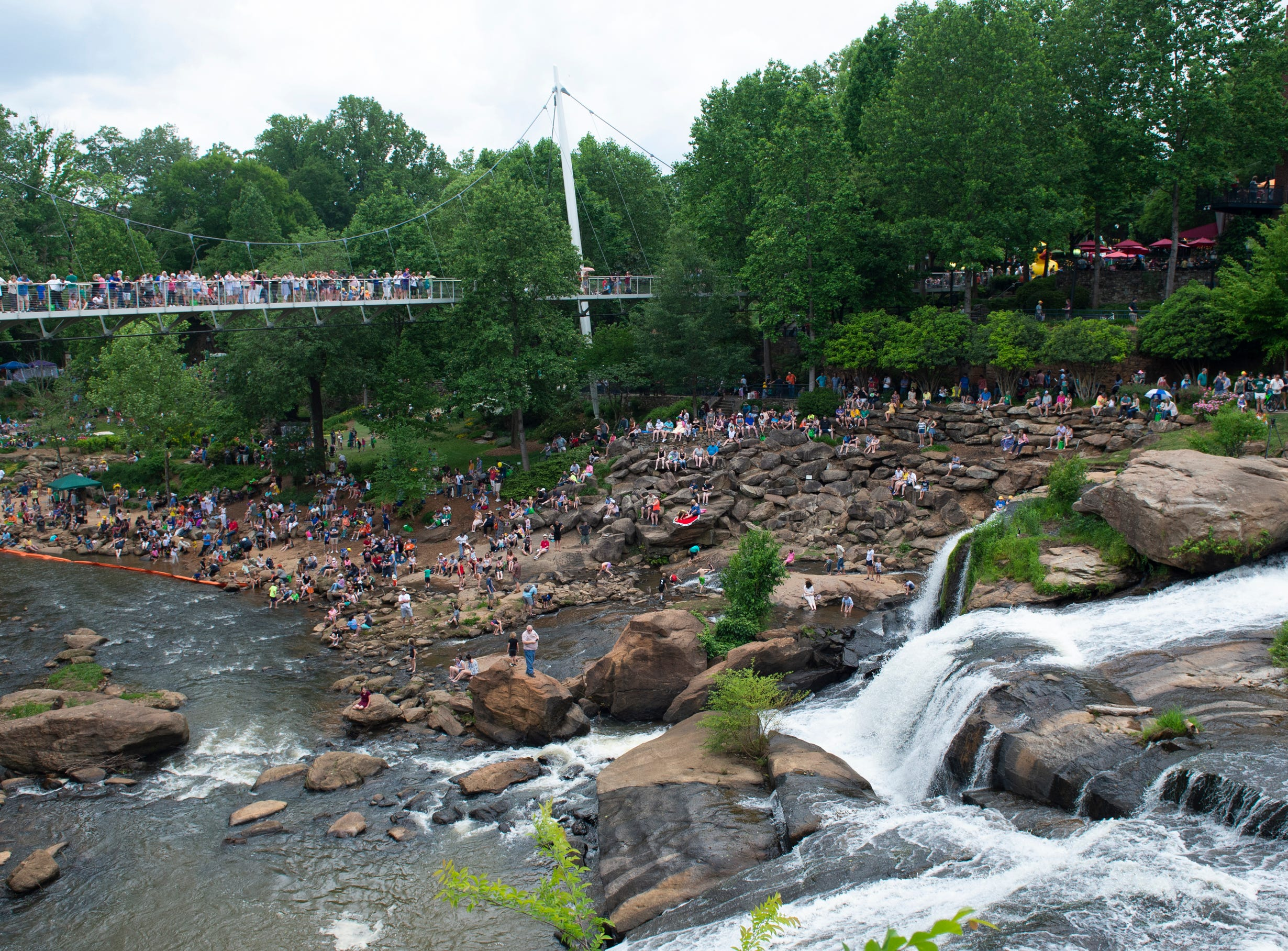 People find spots to watch the 2019 Reedy River Duck Derby in Falls Park on the Reedy Saturday, May 4, 2019.