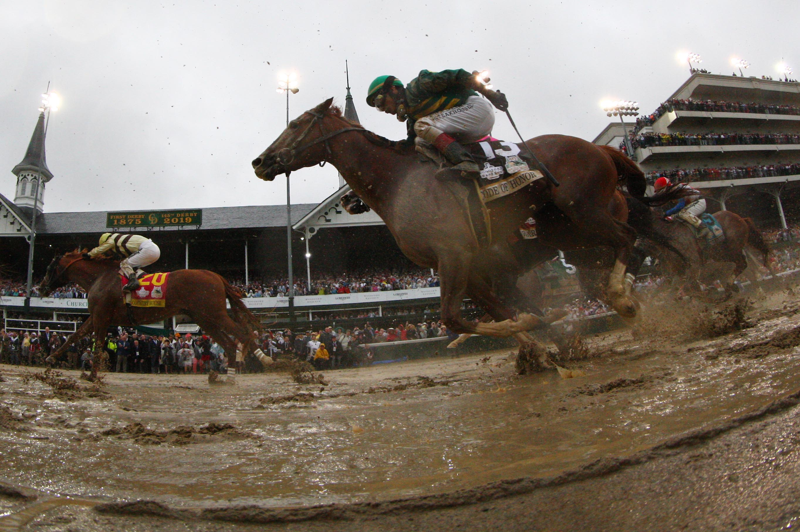 Kentucky Derby racehorses with ties to Tallahassee