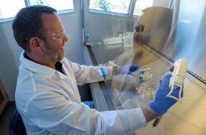 Kevin Houston on April 11, 2019, demonstrates how he would work with cancer cells in his lab in the Chemestry Building at New Mexico State University. Houston was recently awarded a $1.48 million grant from NIH to study Tamoxifen resistance.