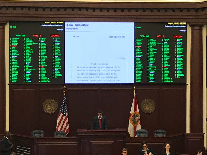 Rep. Loranne Ausley was one of two no votes on the State of Florida 2019 -2020 budget