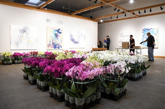 From now until Saturday, Arts Visalia is selling orchids for $25.