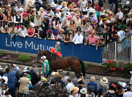 A horse is led through the paddock area before the 145th running of the Kentucky Derby.