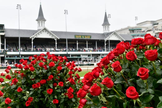 Roses from the infield with the twin spires in the background.