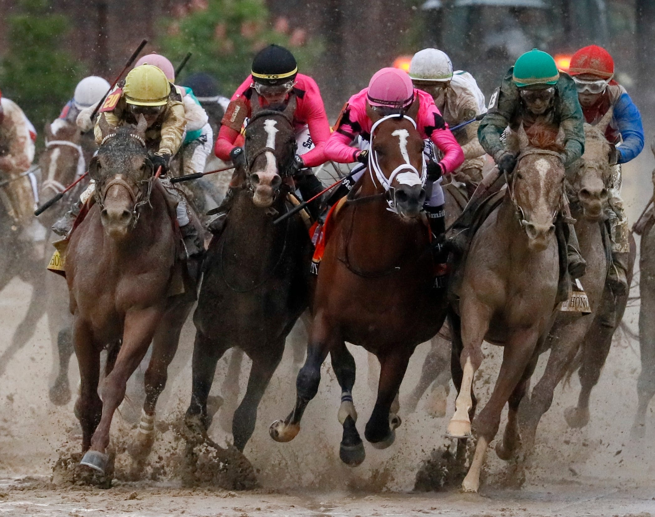photograph relating to Printable List of Kentucky Derby Horses identify Kentucky Derby was harmed through political correctness (viewpoint)