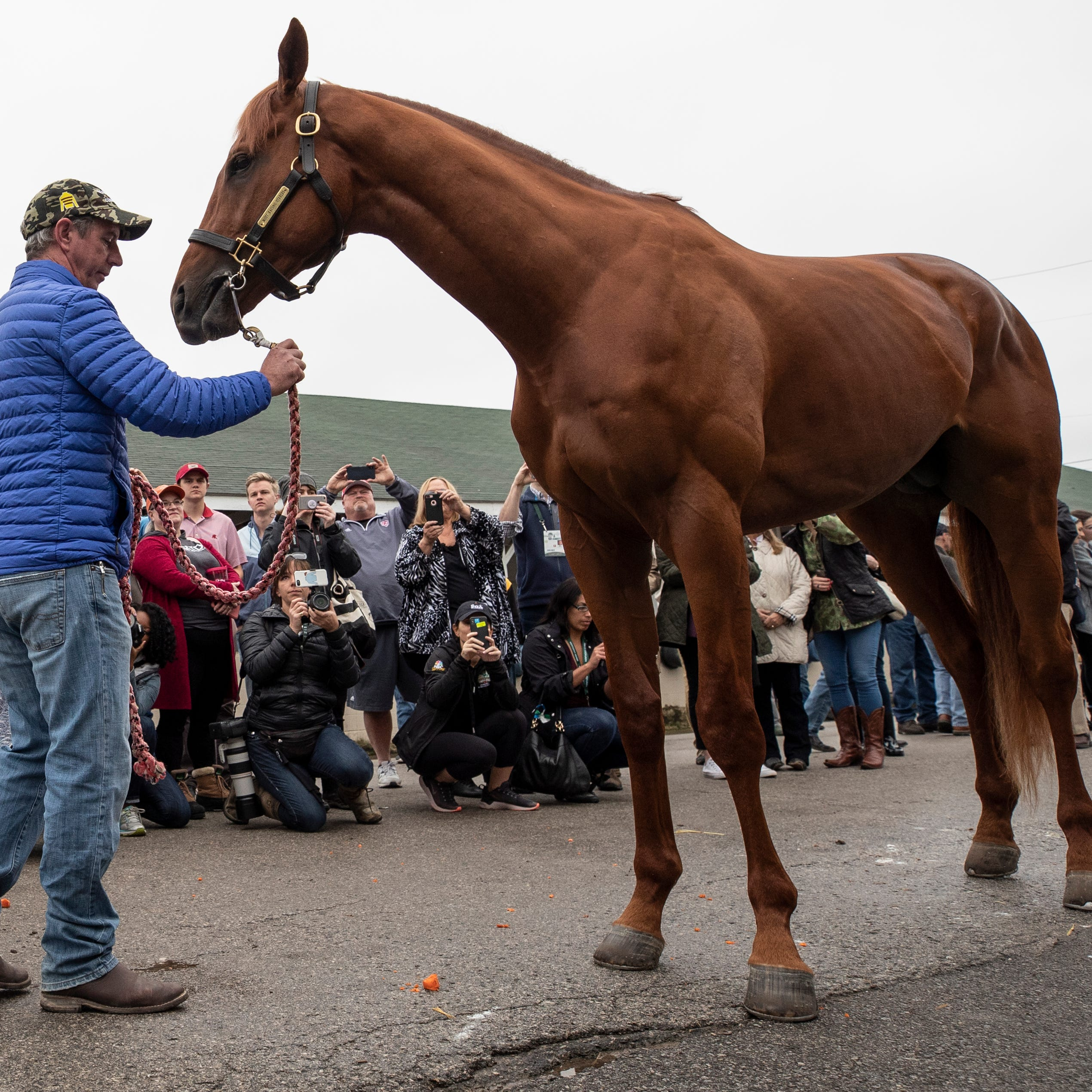 Kentucky Derby winner Country House is not racing in the 2019 Preakness, report says