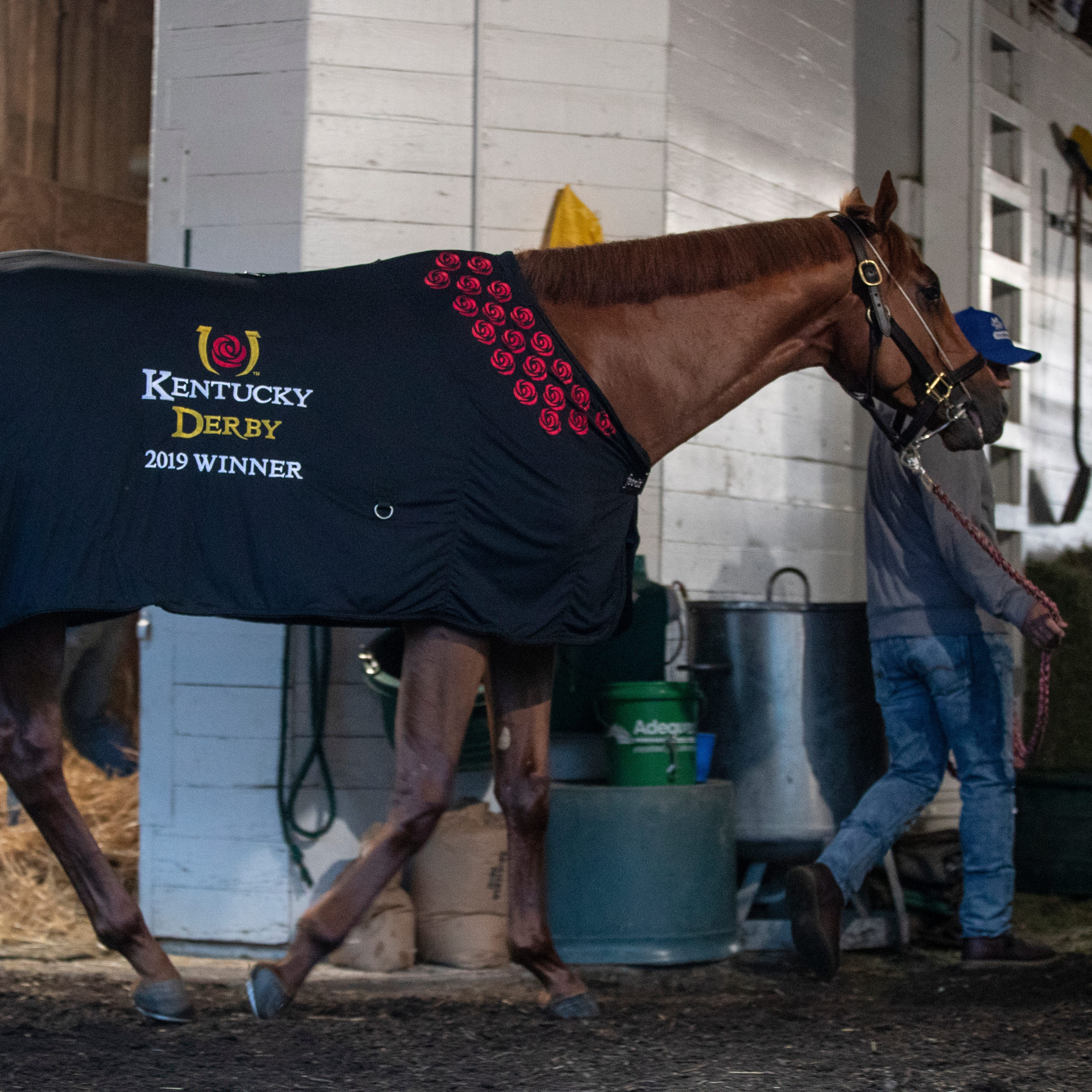 Country House, yes. Maximum Security, no. The possible field for the 2019 Preakness