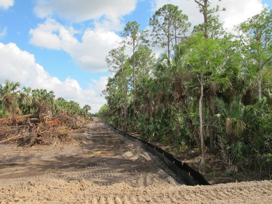 Preliminary site work for a major housing development by GL Homes began at the end of April across Immokalee Road from TwinEagles residential golf community. A 300-foot-wide wildlife corridor, right, will remain undeveloped on the western edge of the property.
