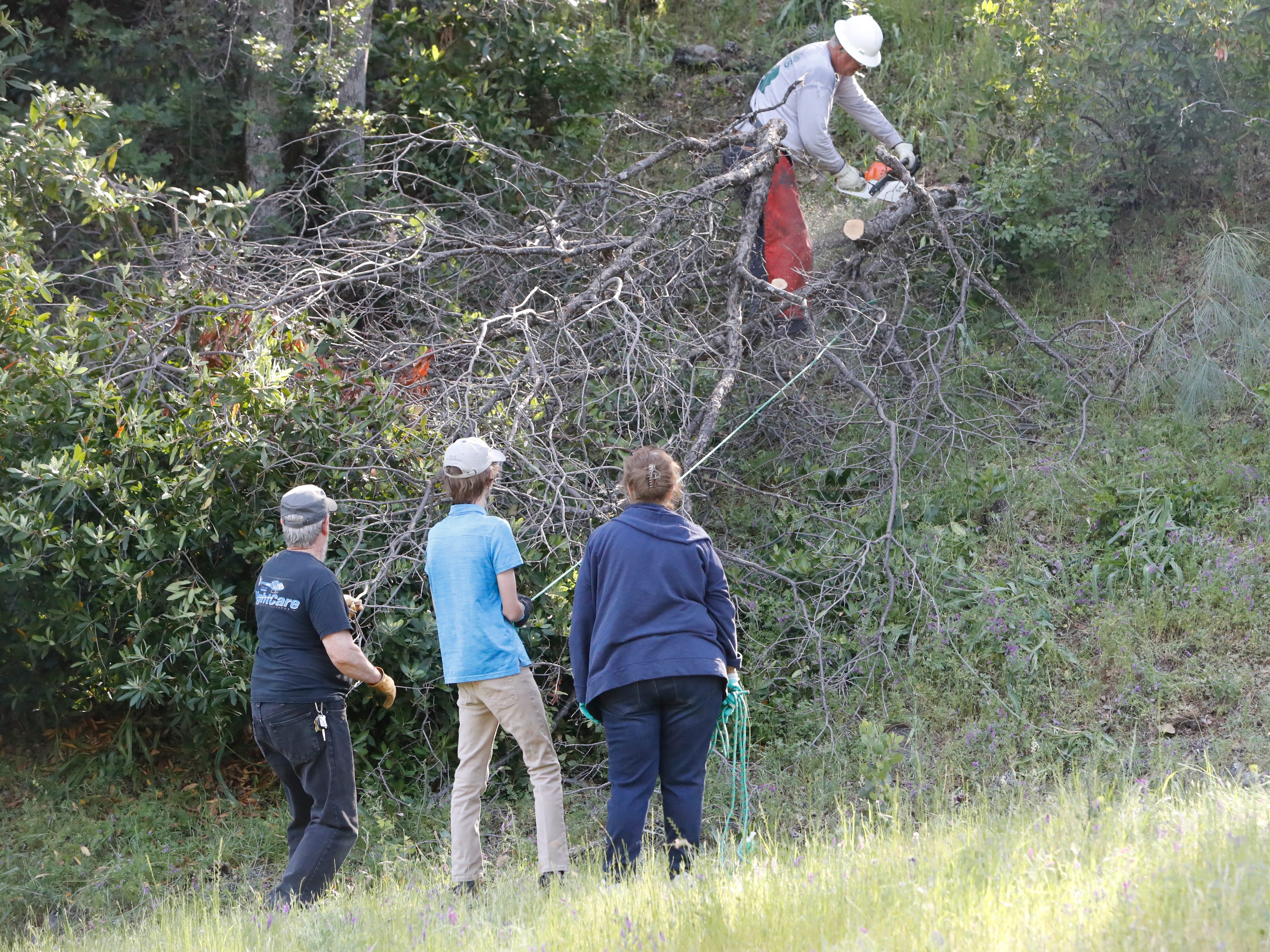 A city of Redding parks department employee saws a dead branch with help from citizen volunteers to create a defensible space from fire along Blazingwood Drive on Saturday, May 4, 2019.