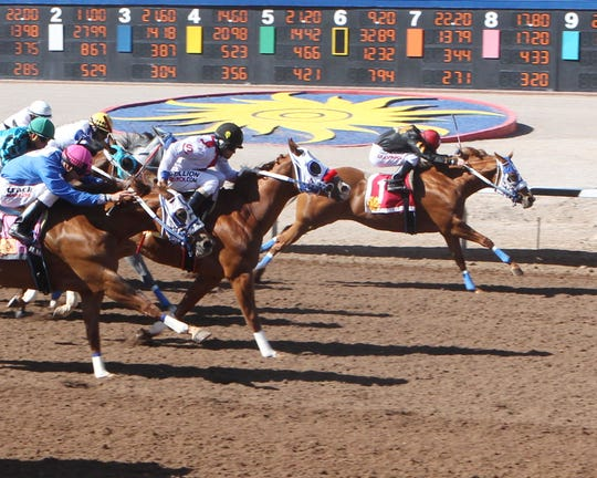Honky Tonk Daddy won the 300-yard, New Mexican Spring Futurity on Sunday at Sunland Park Racetrack & Casino.