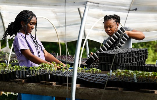 Jetia Porter, 17, left, and Alzale'a Braxton, 16, plant seeds on the Girls Inc. Youth Farm Friday, April 26, 2019 in Memphis, Tenn. Girls harvest every Friday; for produce sold every Saturday at the Farmers Market.
