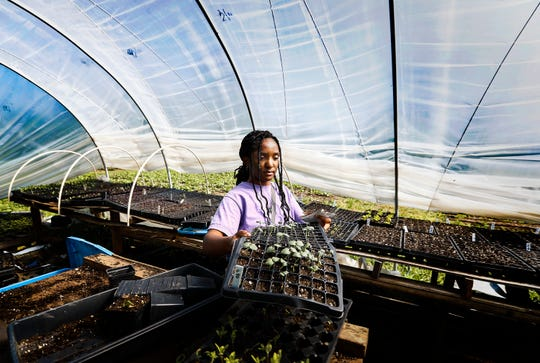 Jetia Porter, 17, readies planting containers for seeds on the Girls Inc. Youth Farm Friday, April 26, 2019 in Memphis, Tenn. Girls harvest every Friday; for produce sold every Saturday at the Farmers Market.