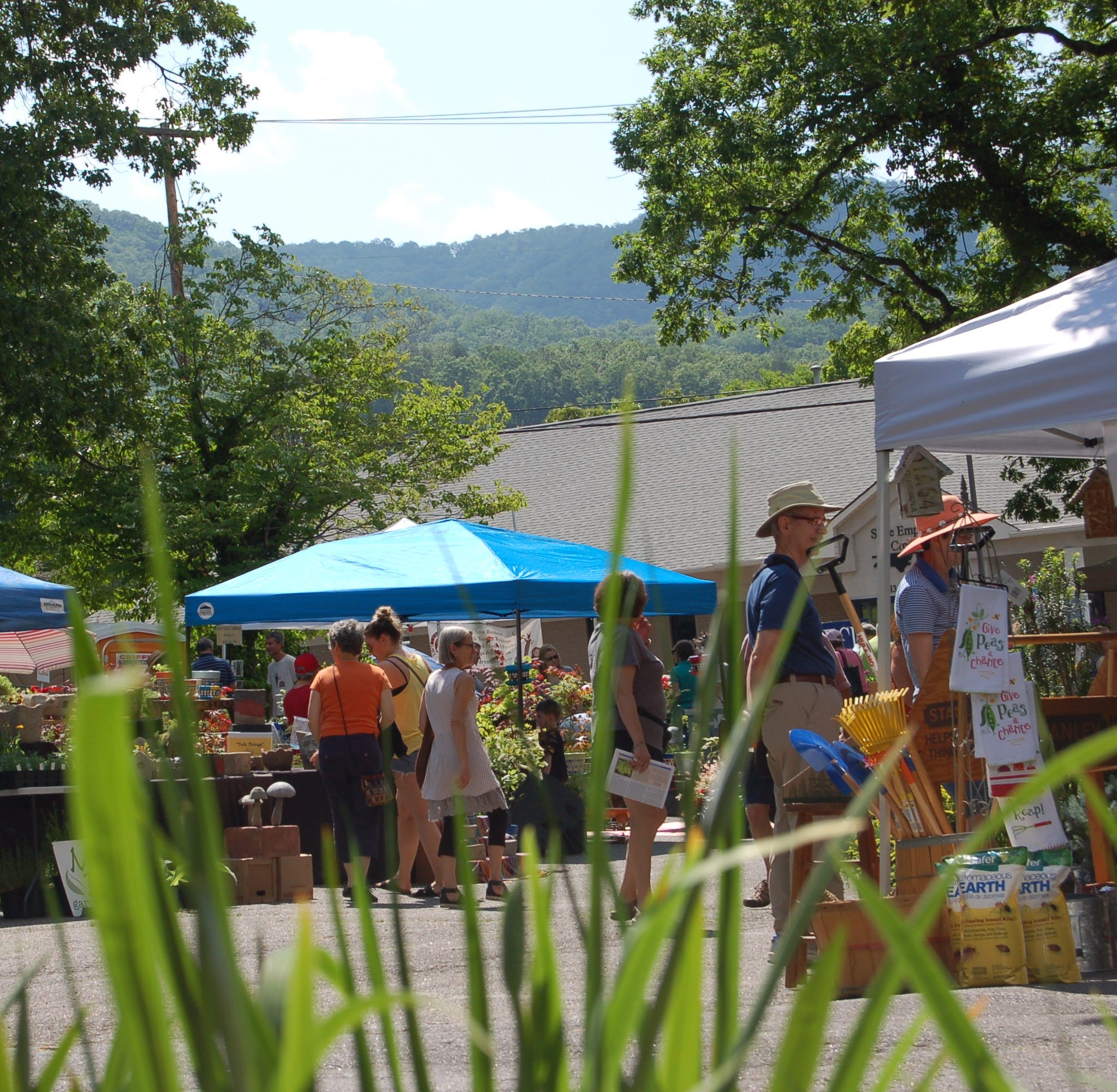 Beautification committee adds extra day for 14th Annual Garden Sale