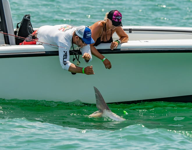A team logs a tarpon in the eighth annual 'Ding' Darling and Doc Ford's Tarpon Tournament.