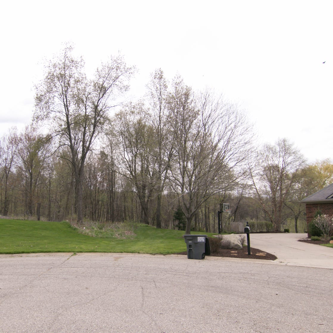 Brighton Township homeowners, developer in court fight over proposed access road