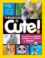 """This Book is Cute!"" by Sarah Wassner Flynn"