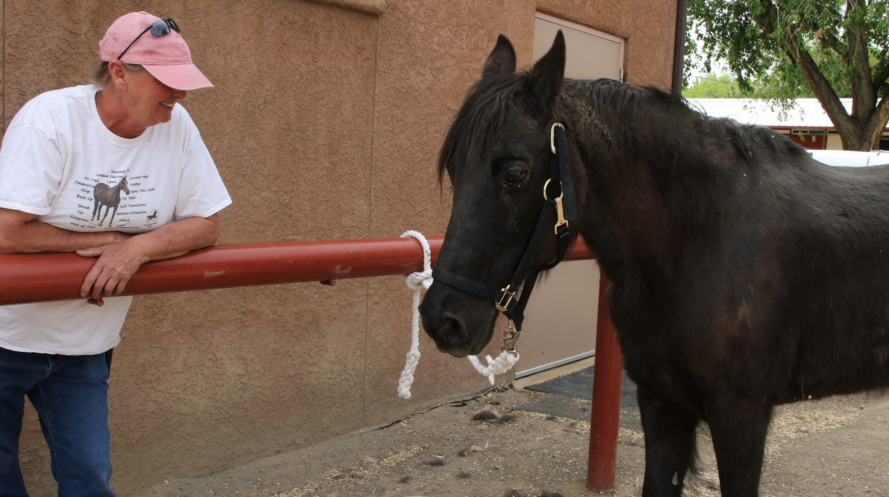Dulce the horse receives a much-needed hoof trim