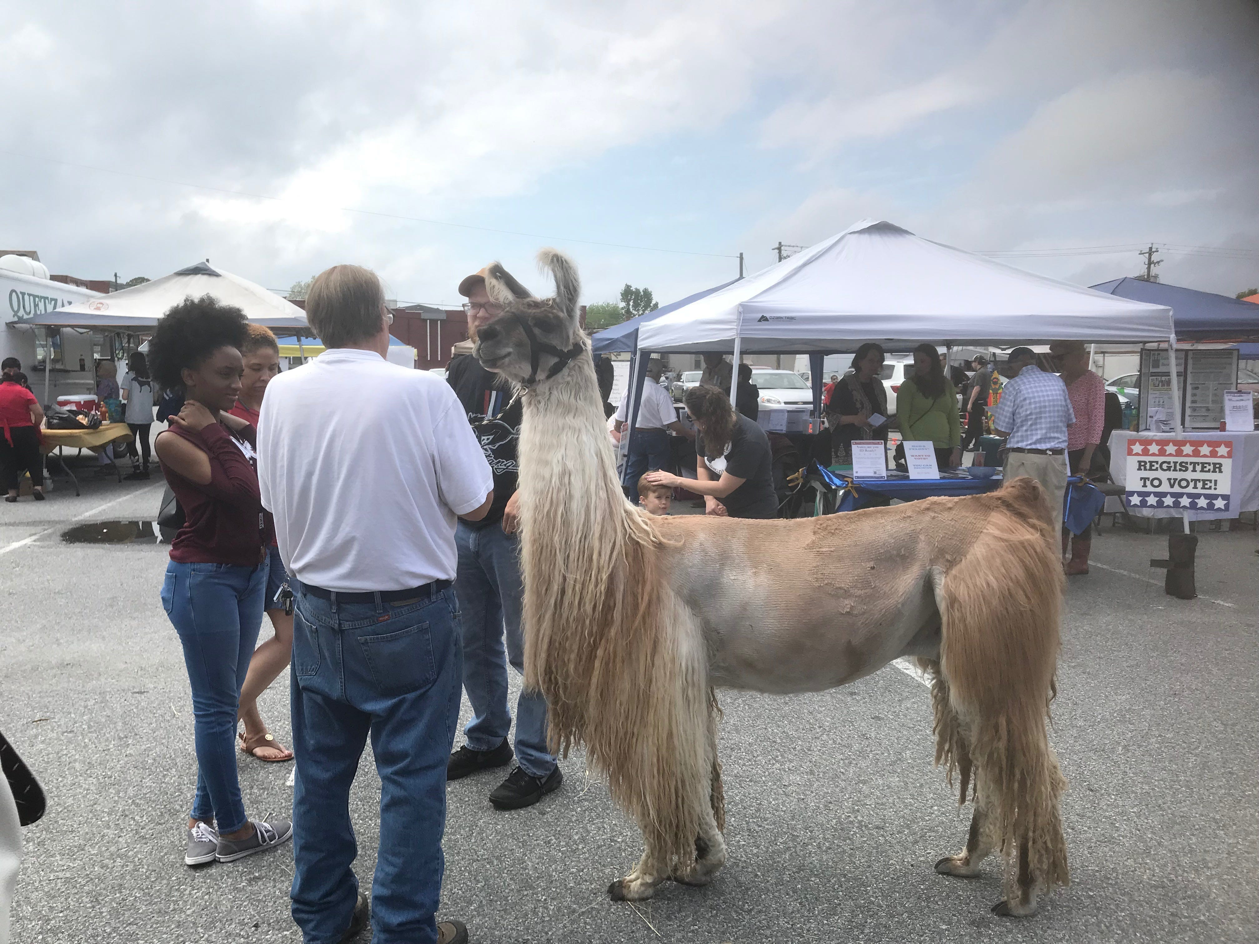The Eastern Shore Public Library held a multicultural festival at the site of the new library in Parksley, Virginia on Sunday, May 5, 2019.