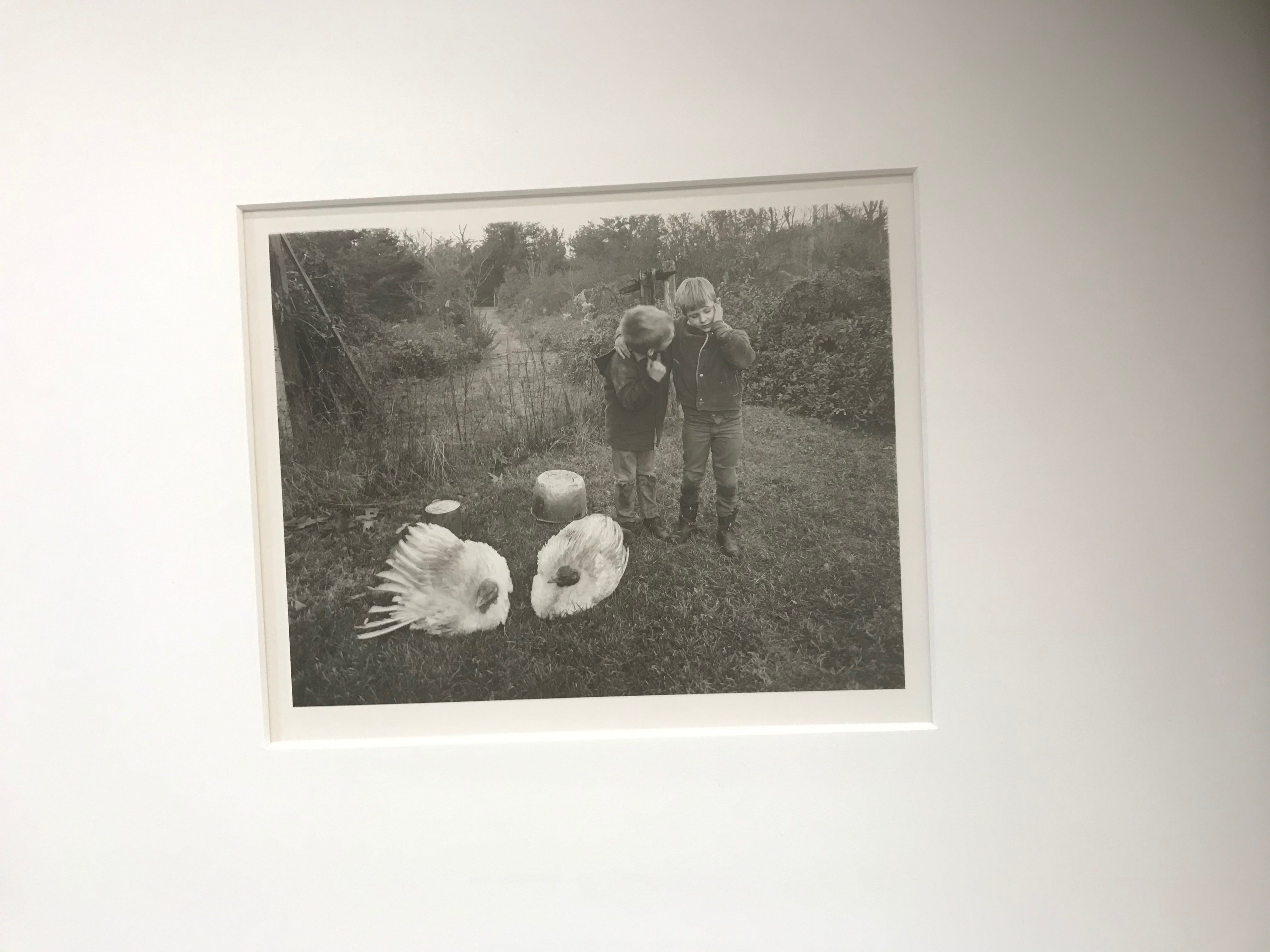 This photograph by Emmett Gowin of Danville, who lived as a youth on Chincoteague, was part of the Virginia Museum of Fine Arts artmobile display at a multicultural festival held at the site of the future regional library in Parksley, Virginia on Sunday, May 5, 2019.