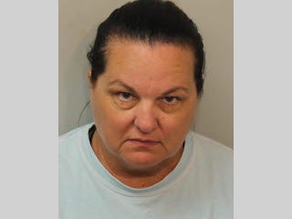 Belinda Boyles, 49, is accused of stealing more than $53,700 using the credit cards of her workplace and co-workers at Agri Products Incorporated.