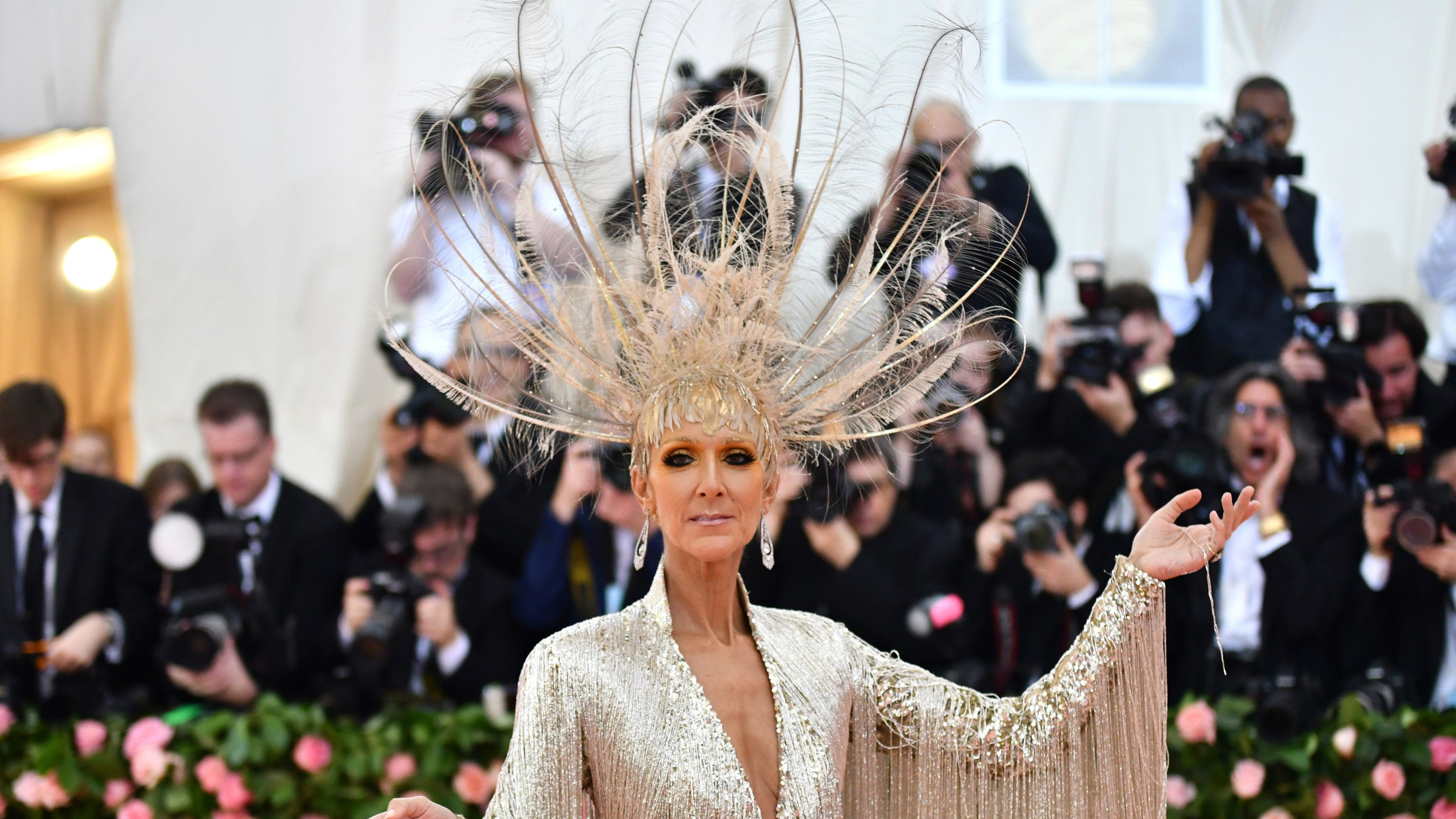 Met Gala: Celine Dion Is An Instant Meme On The Red Carpet