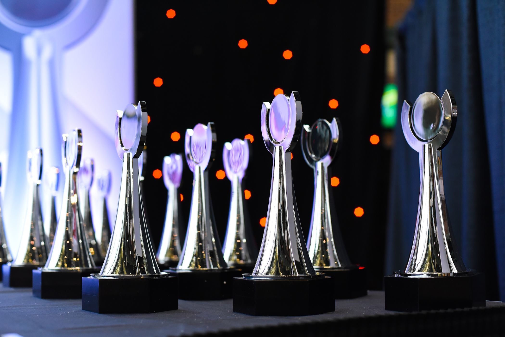Trophies will be handed out as part of Wednesday's Wisconsin High School Sports Awards show.
