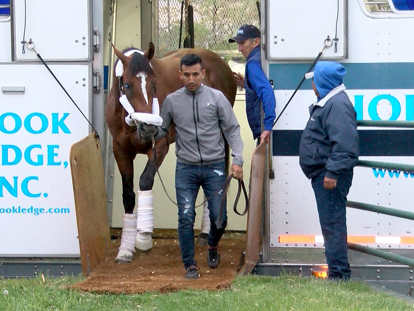 Edelberto Rivas leads Maximum Security, disqualified after winning the Kentucky Derby on Saturday, off a transport van after arriving at Monmouth Park early Tuesday, May 7, 2019.