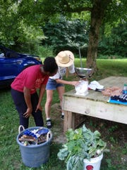Participants who attend throughout the week will earn Junior Master Gardener certificates