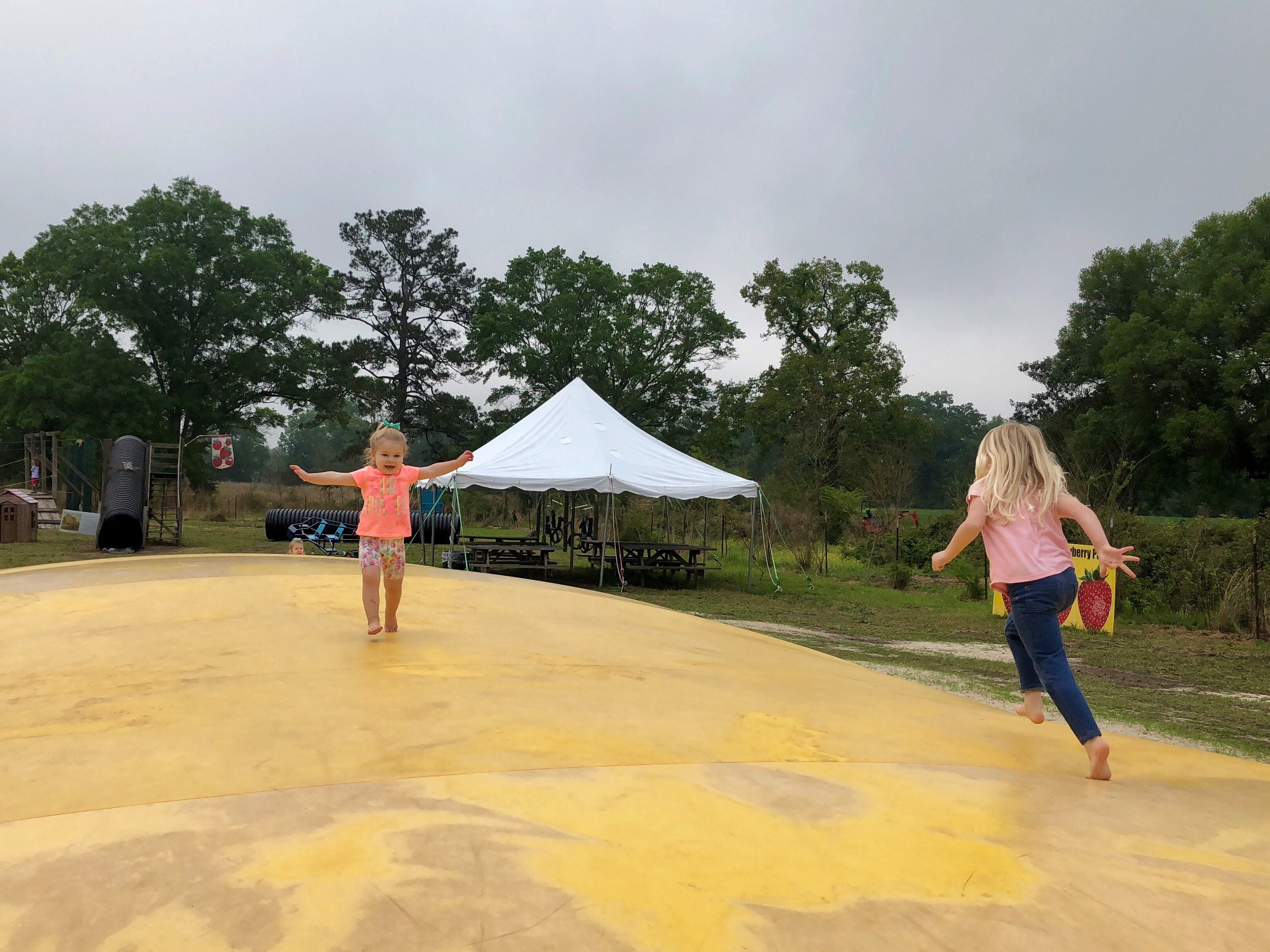 """Cousins Marie Guidry and Claire Ivy run and jump on the giant """"jumping pillow"""" at Mrs. Heather's Strawberry Farm in Albany, Louisiana, April 6."""