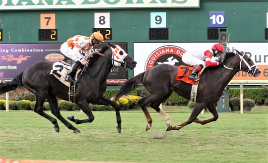 In Louisiana, a state court reversed the  disqualification of Coalport (No. 7) which crossed the finish line ahead of Benwill (2) in 2014 Unbridled Stakes at Louisiana Downs.