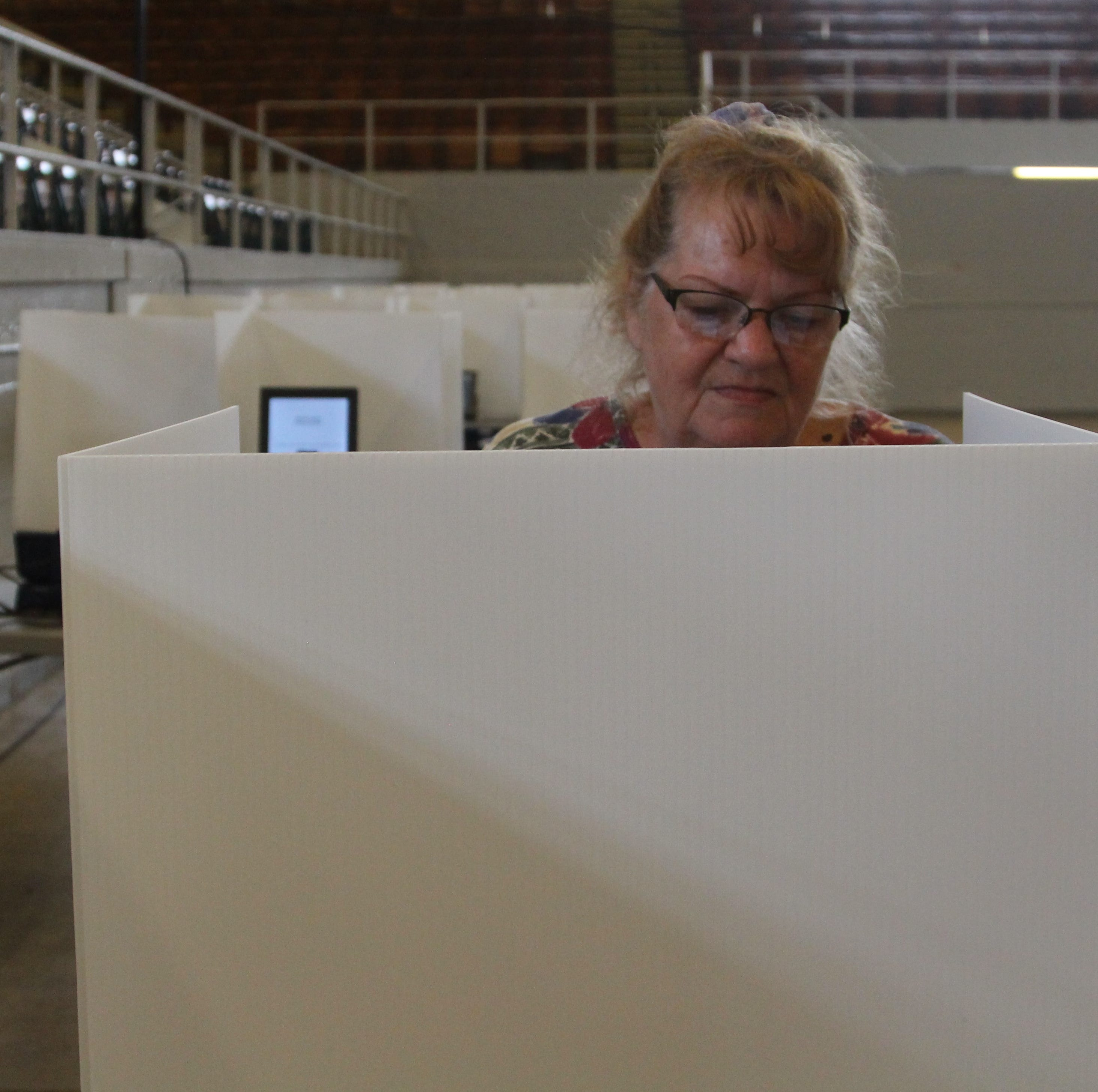 New Marion voting machines work well in first election