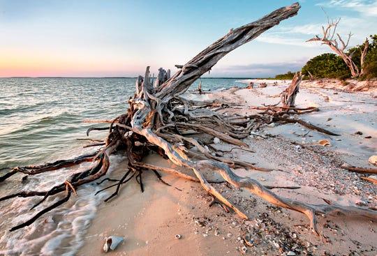 """Pavillion Key Driftwood,"" by Jim Freeman."