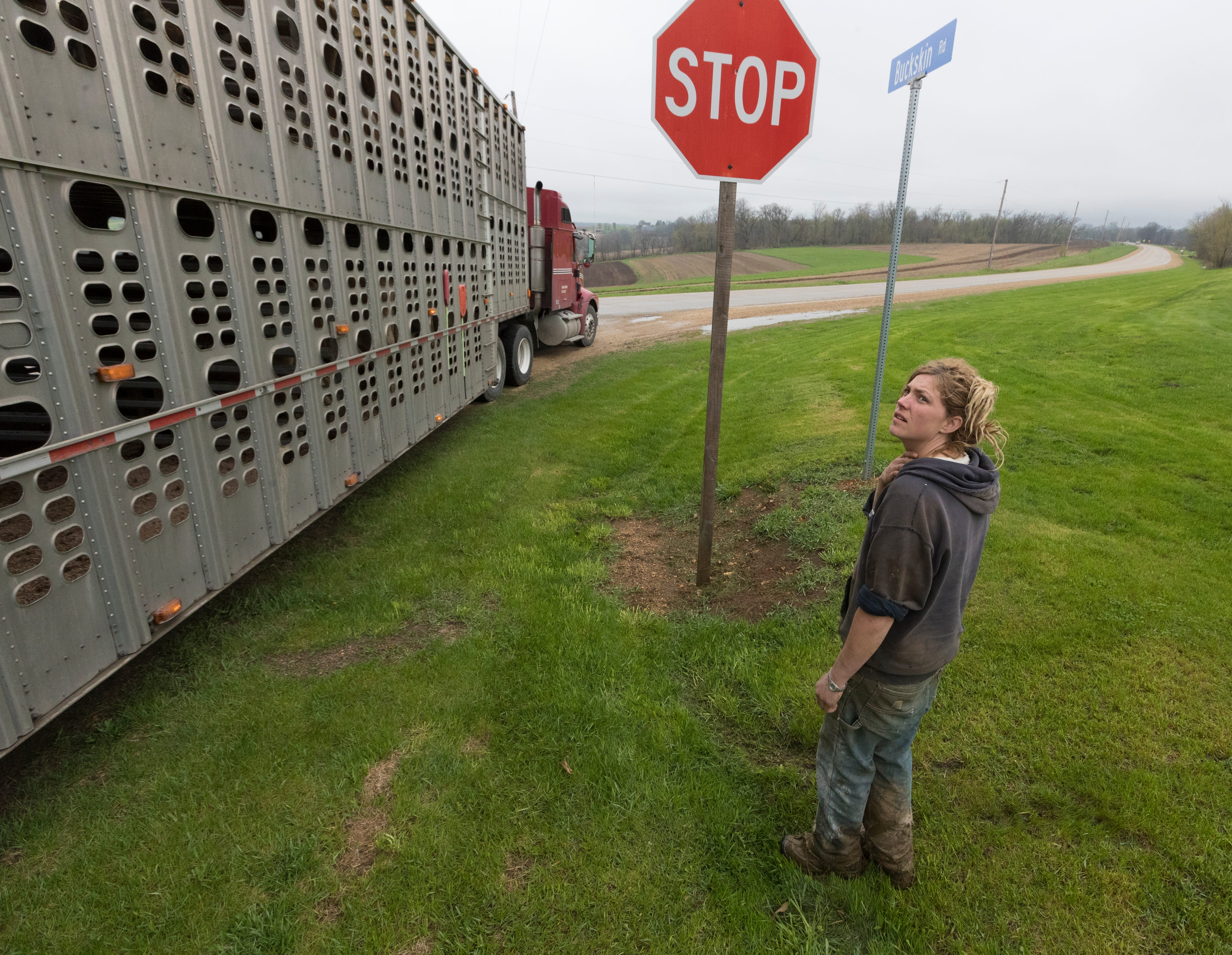 Emily Harris takes a final look at most of her herd as the truck leaves to carry the herd to new farms. Emily and her wife, Brandi Harris, sold their cows and gave up dairy farming.