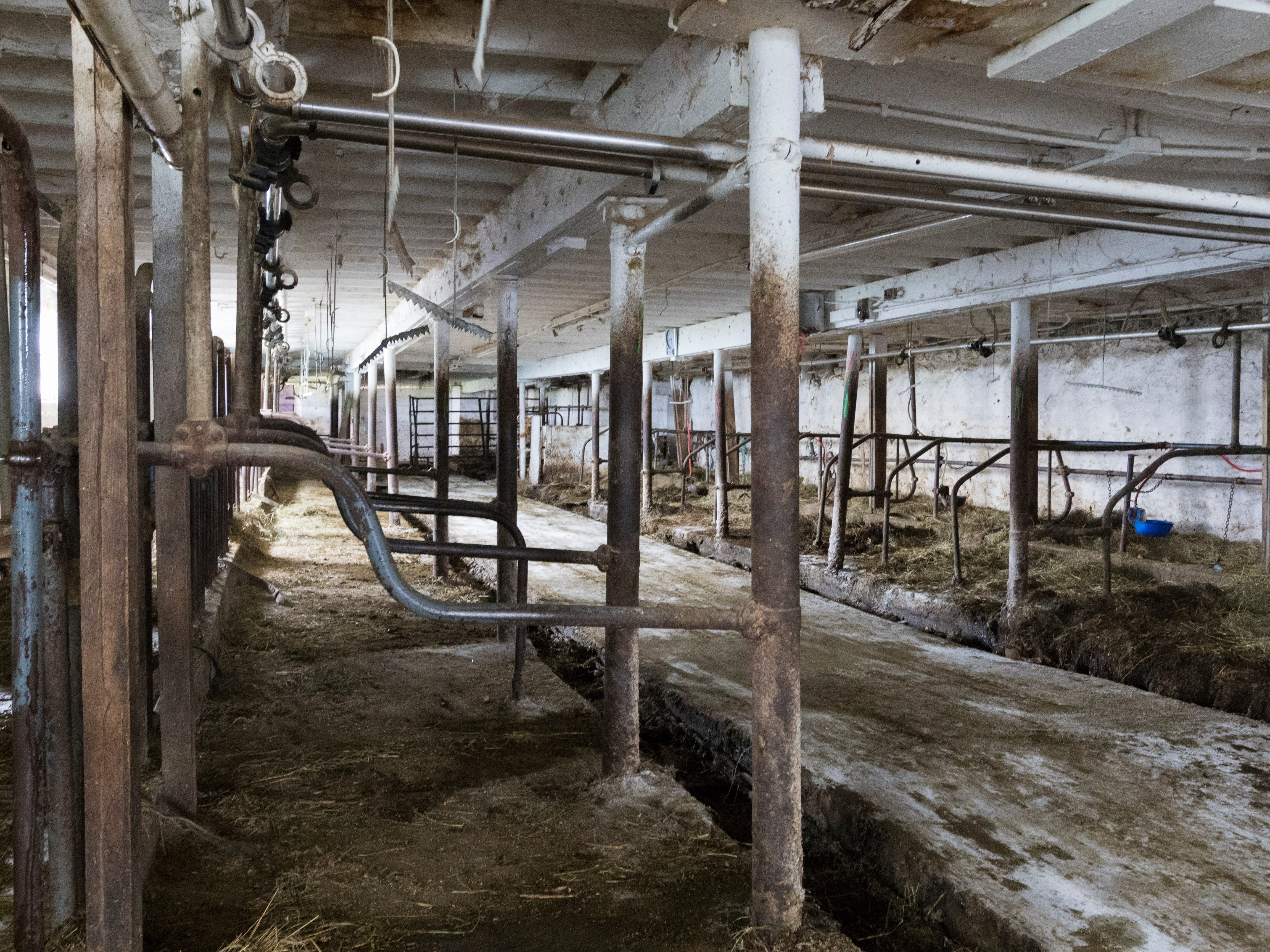 The barn is empty after the cows were loaded onto trailers.
